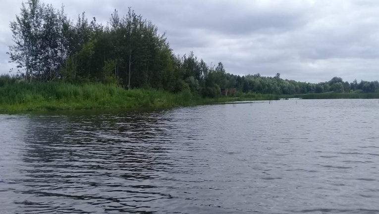 Русло реки Воронеж в Добровском районе стало чище